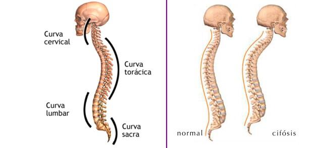 cuidar tu espalda haciendo ejercicio